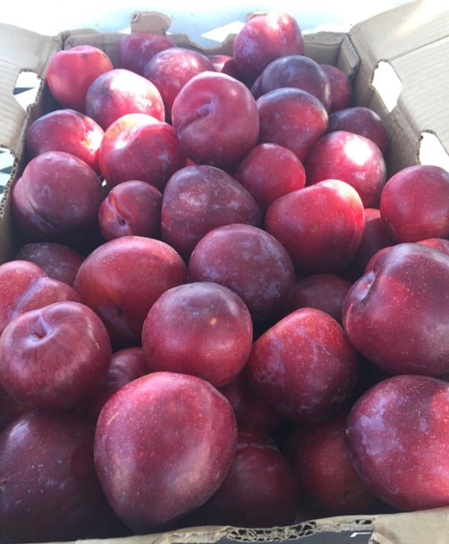 Peaches, Nectarines, Plums sold at Walmart, Aldi, Costco, Among